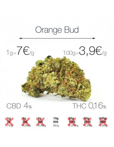 Orange Bud - cogollo CBD
