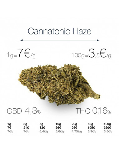 Cannatonic Haze - cogollo CBD