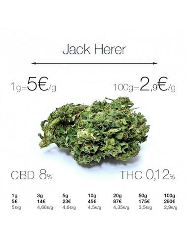 Jack Herer - cogollo CBD