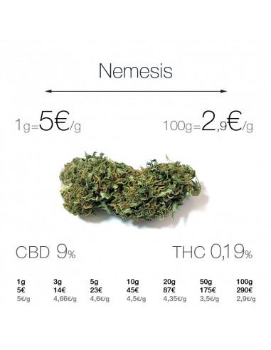 Nemesis - cogollo CBD