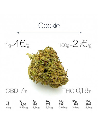 Cookie - cogollo CBD