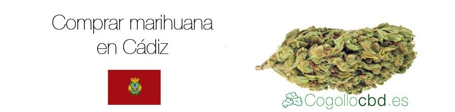 Comprar marihuana en Cádiz